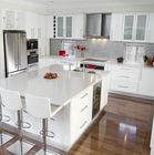 Paint Door Finish Solid Wood Kitchen Cabinets Solid Wood Material Blum / Dtc Hardware